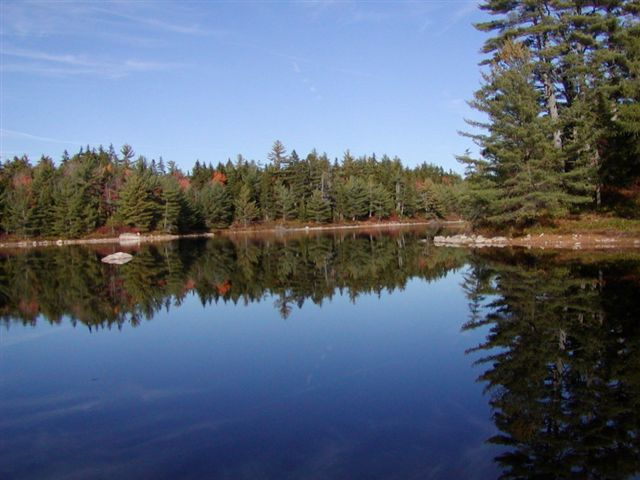 Marshfield Maine Vacation Real Estate For Sale Price