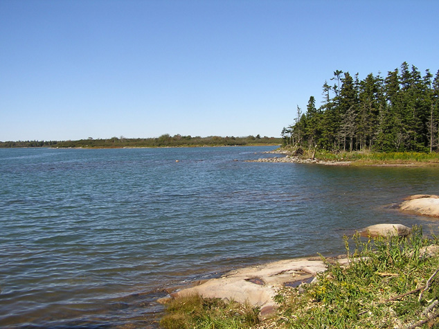 jonesport maine vacation real estate for sale 7 6 acres